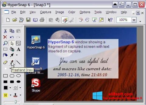 Screenshot HyperSnap for Windows 8
