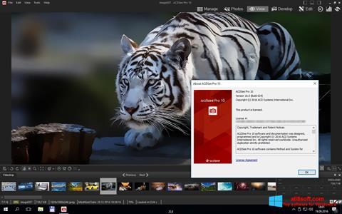 Screenshot ACDSee Pro for Windows 8