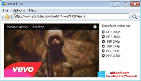 Screenshot MassTube for Windows 8