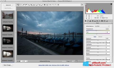 Screenshot Adobe Camera Raw for Windows 8