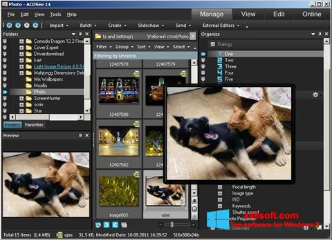 Screenshot ACDSee Photo Manager for Windows 8