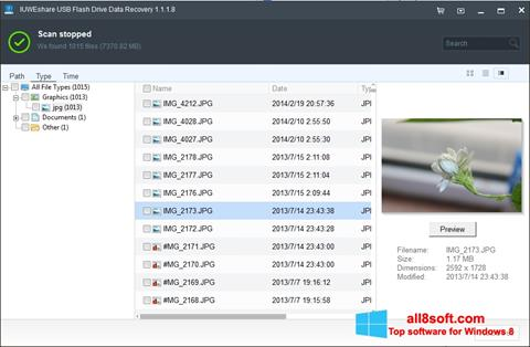Screenshot USB Flash Drive Recovery for Windows 8