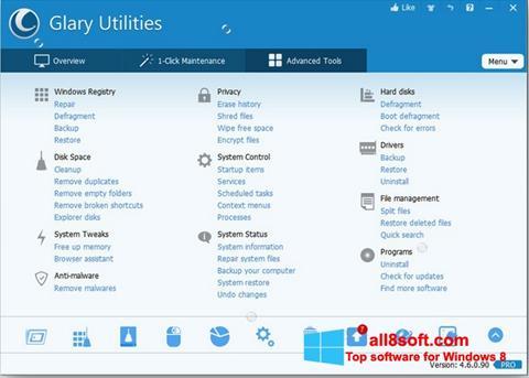 Screenshot Glary Utilities Pro for Windows 8