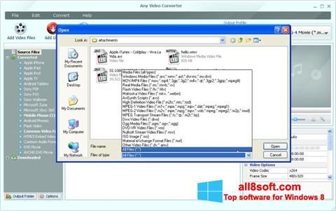 Screenshot Any Video Converter for Windows 8