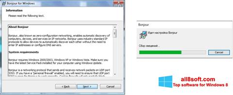 Screenshot Bonjour for Windows 8
