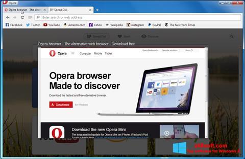 Screenshot Opera Developer for Windows 8