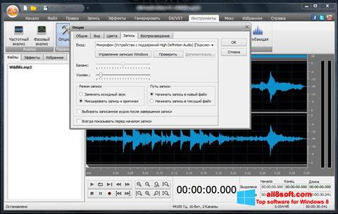 Screenshot AVS Audio Editor for Windows 8