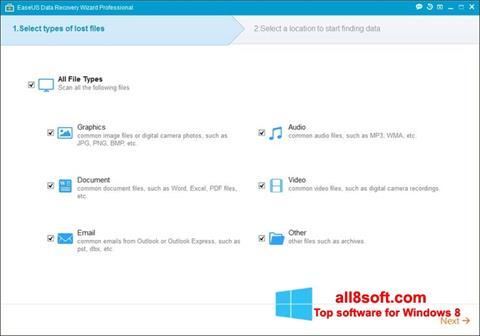 Screenshot EaseUS Data Recovery Wizard for Windows 8
