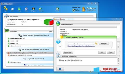 Screenshot Driver Detective for Windows 8