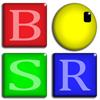 BSR Screen Recorder for Windows 8