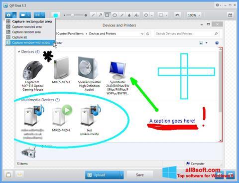 Screenshot QIP Shot for Windows 8
