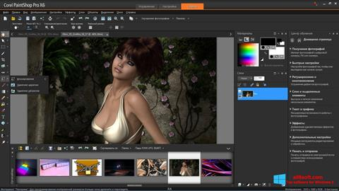 Screenshot PaintShop Pro for Windows 8