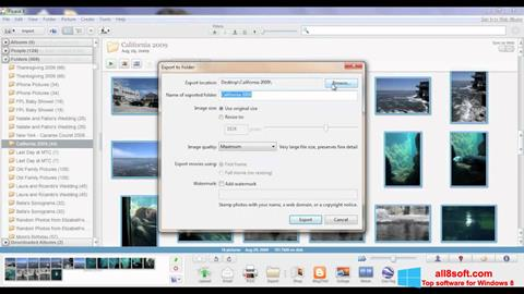 Screenshot Picasa for Windows 8