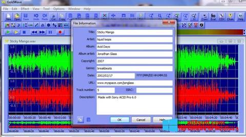 Screenshot GoldWave for Windows 8