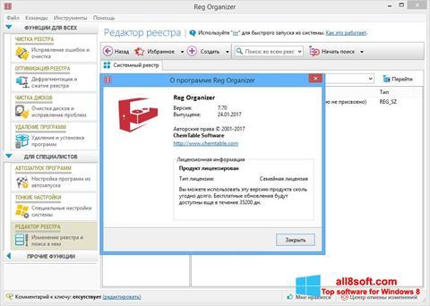 Screenshot Reg Organizer for Windows 8
