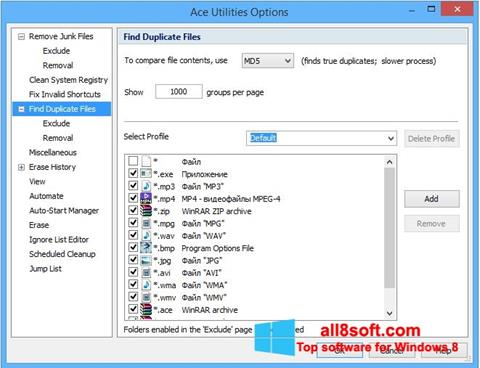 Screenshot Ace Utilities for Windows 8