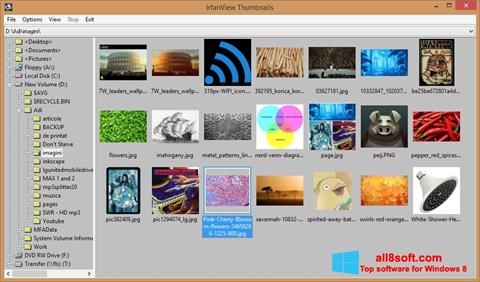 Screenshot IrfanView for Windows 8