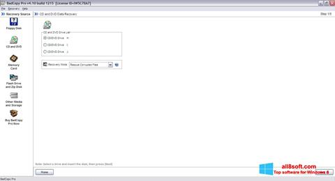 Screenshot BadCopy Pro for Windows 8