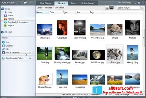 Screenshot RealPlayer for Windows 8