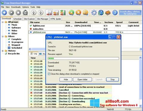 Screenshot Download Master for Windows 8